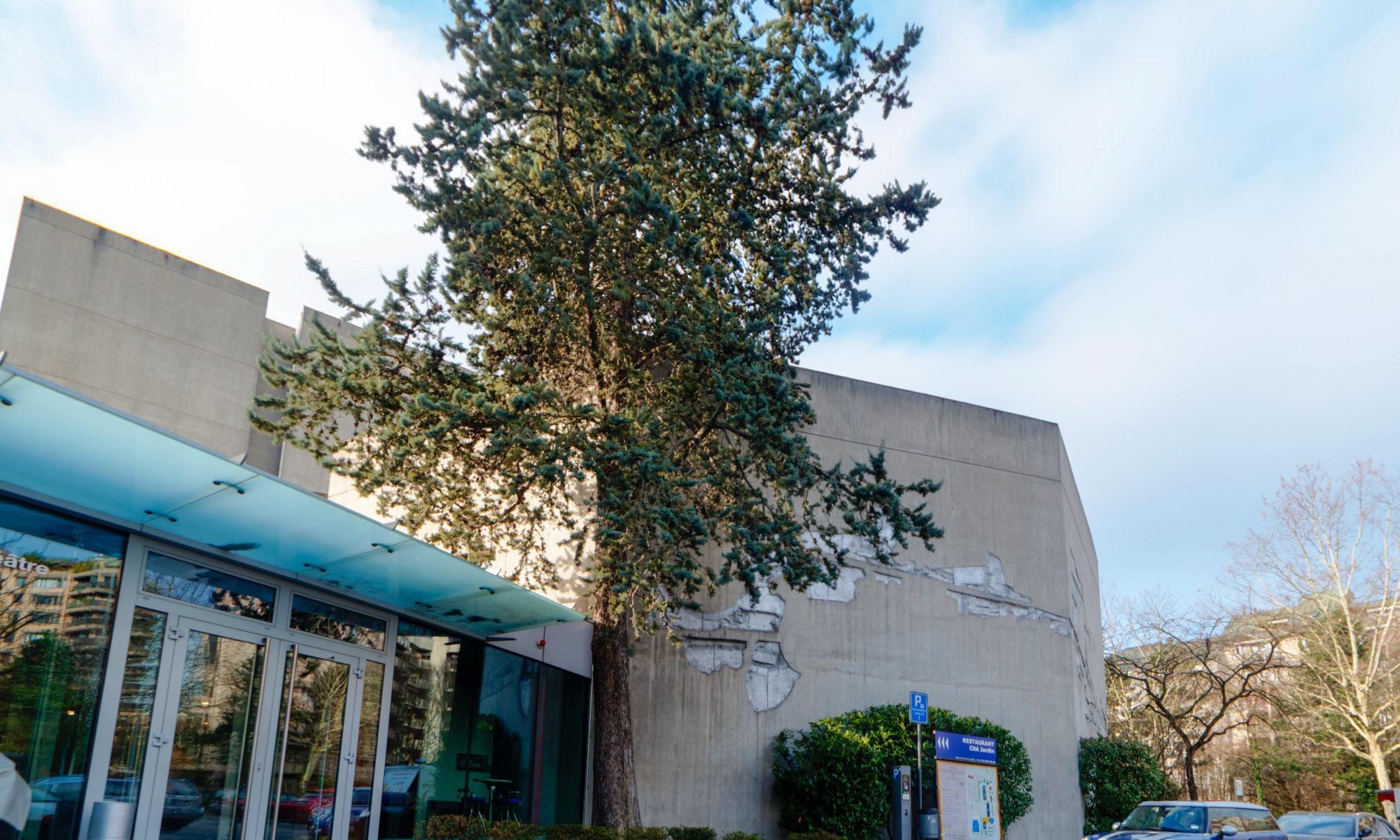 La Cité Bleue | théâtre